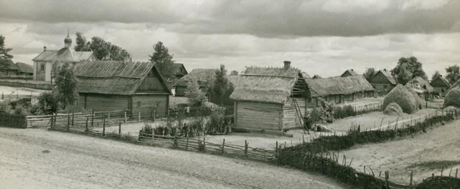 Wieś poleska (domena publiczna)